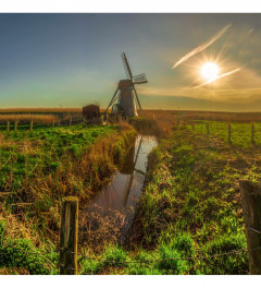 Summer Windmill