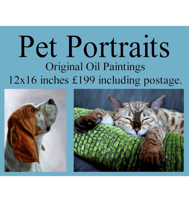Pet Portrait in oils of your dog, cat or any other animal.