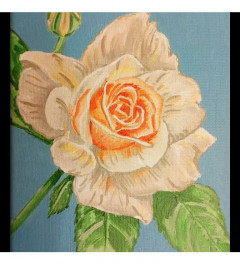 The peach rose SOLD