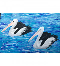 Tangalooma Pelicans