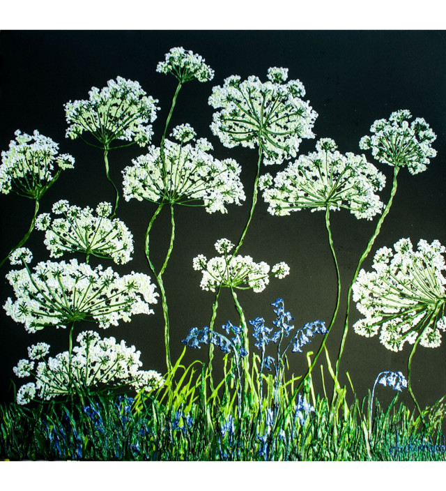 Cow Parsley and Bluebells