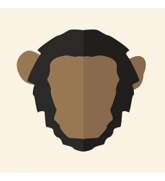 Chimp by Dave