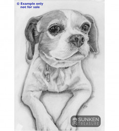 Pet portraits - commissions from