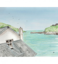 Padstow View