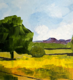 THE BUTTERCUP FIELD PAST WINTON